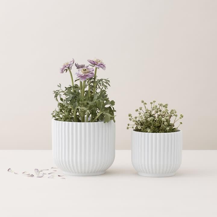 Blumentopf von Lyngby Porcelæn