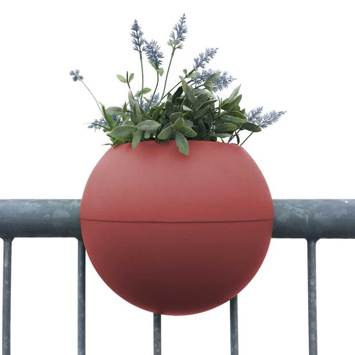 Der rephorm - ballcony bloomball Pflanztopf