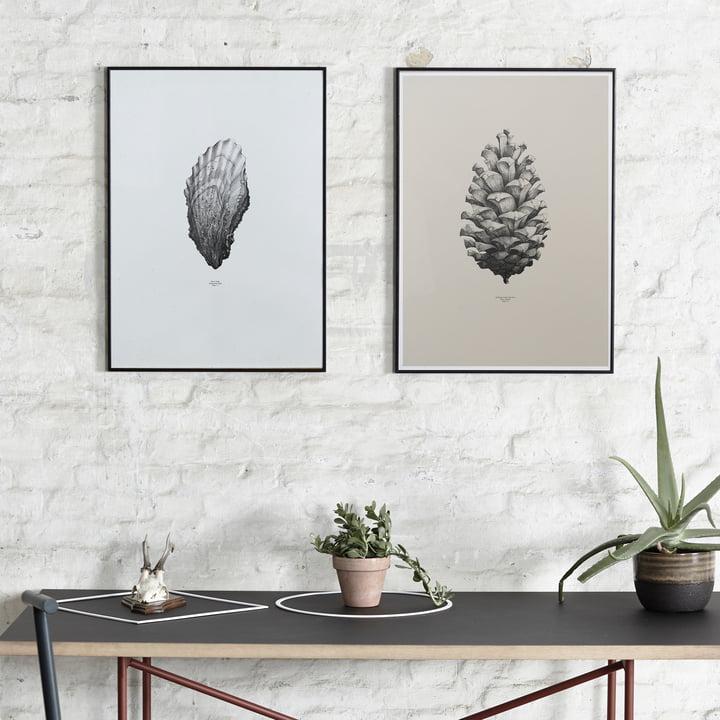 Poster Nature 1:1 von Paper Collective