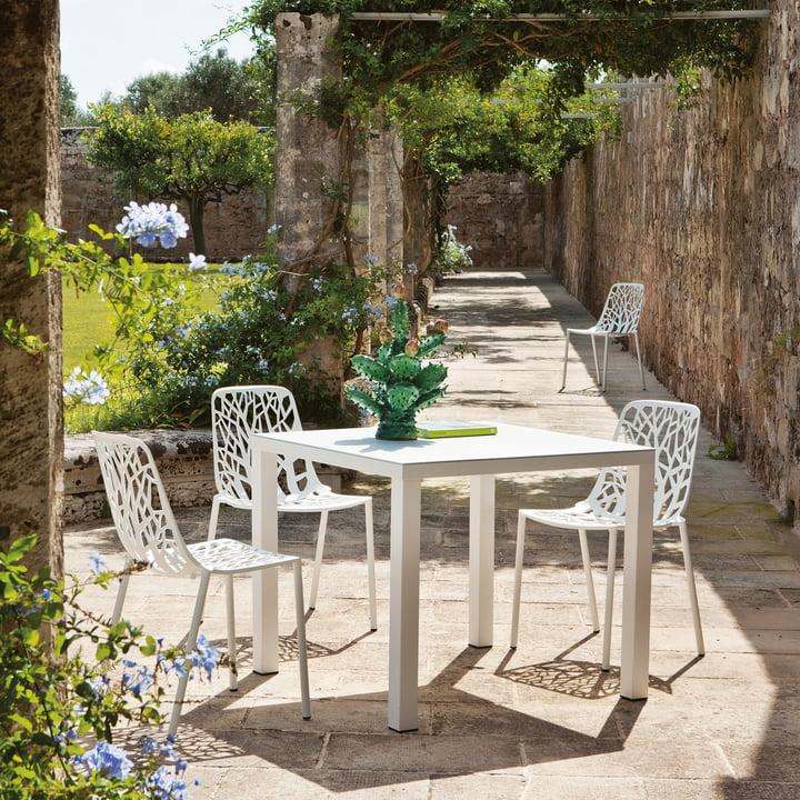 Easy Tisch und Forest Stapelstuhl von Fast