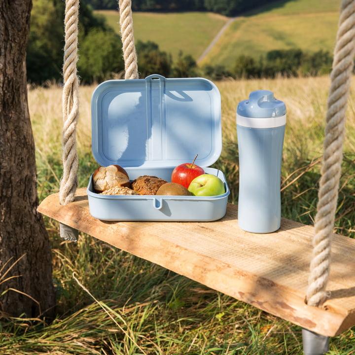 Lunchbox fürs Picknick und unterwegs