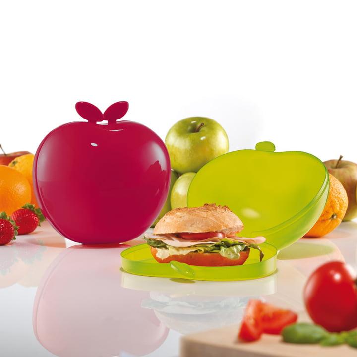 Koziol-Brotdose für Äpfel, Brote und Gemüse