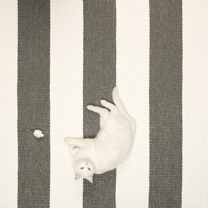 Bob Teppich von Pappelina