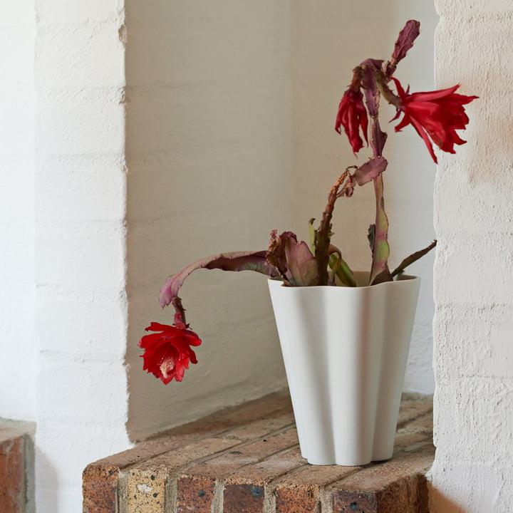 Die Hay - Iris Vase in weiss