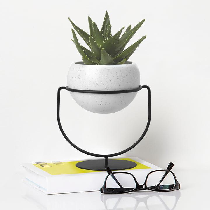 Der Umbra - Nesta Pflanzenständer, weiß gesprenkelt auf dem Tisch platziert