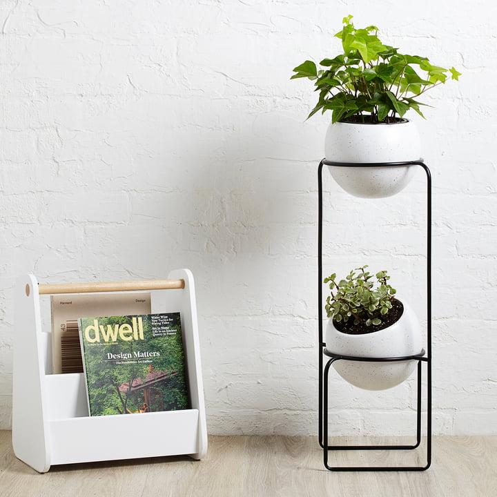 Der Umbra - Nesta Freestand Pflanzenständer mit Zeitungsständer