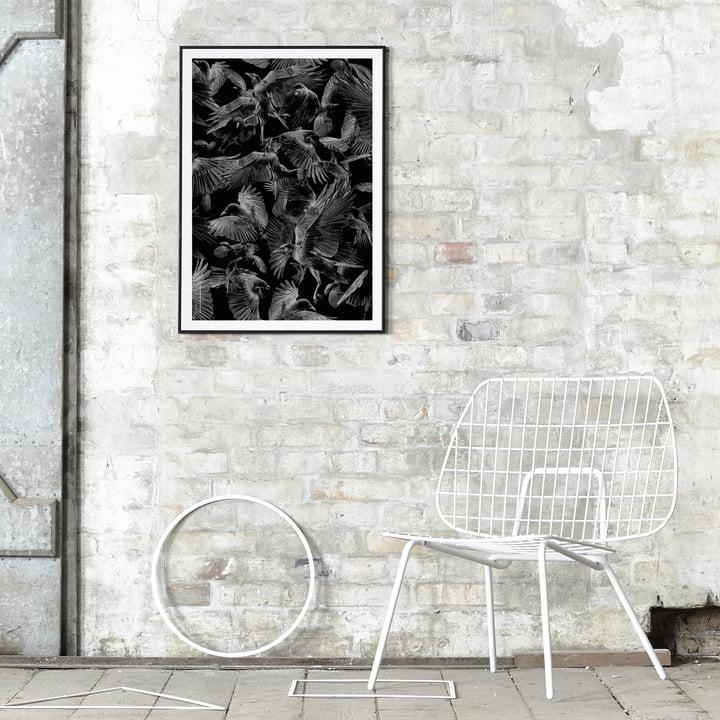 Paper Collective - Black Crows an der Wand platziert