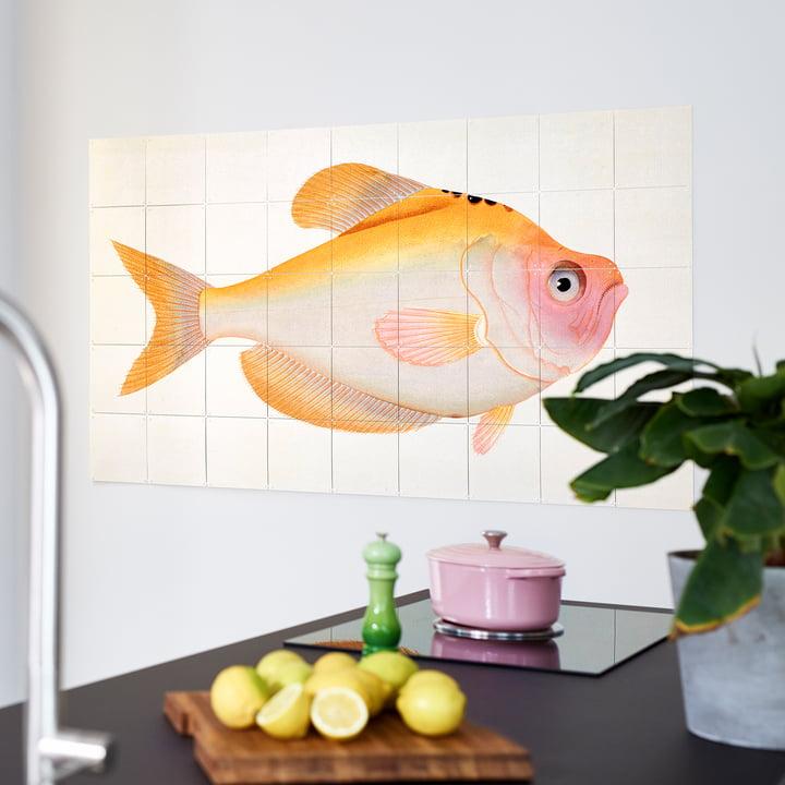 Gelber Fisch (Bloch) von IXXI